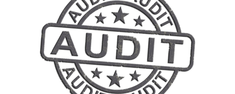 Internationale Audits